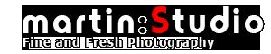 www.javier-martin.com logo